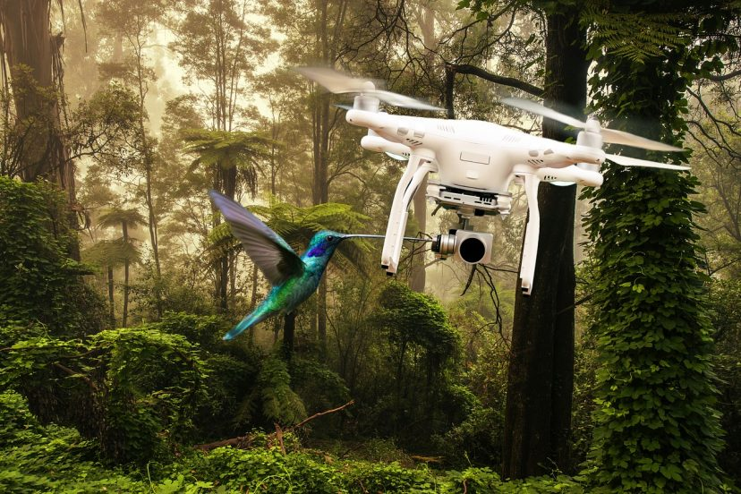 How We Can Use Drones To Help The Environment