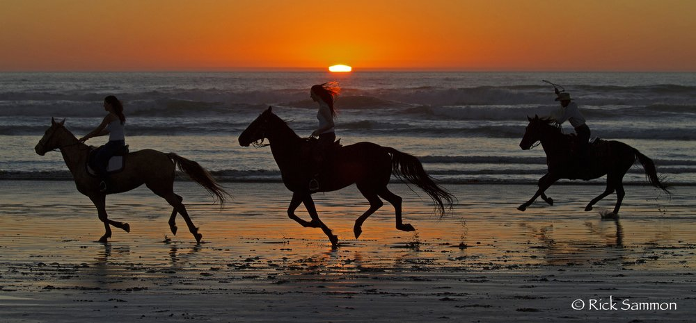Three horseback riders galloping left across a beach at sunset. The odd number of foreground objects attracts the human eye more naturally than a similar photo that might only have two horseback riders.